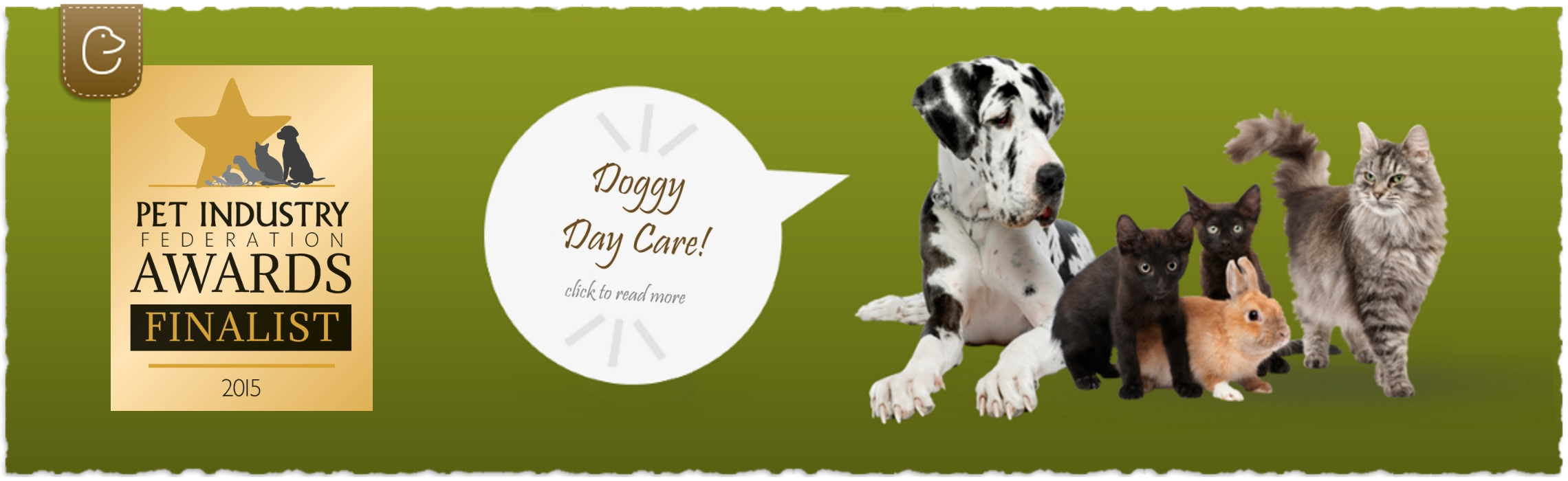 Doggy Day Care in London