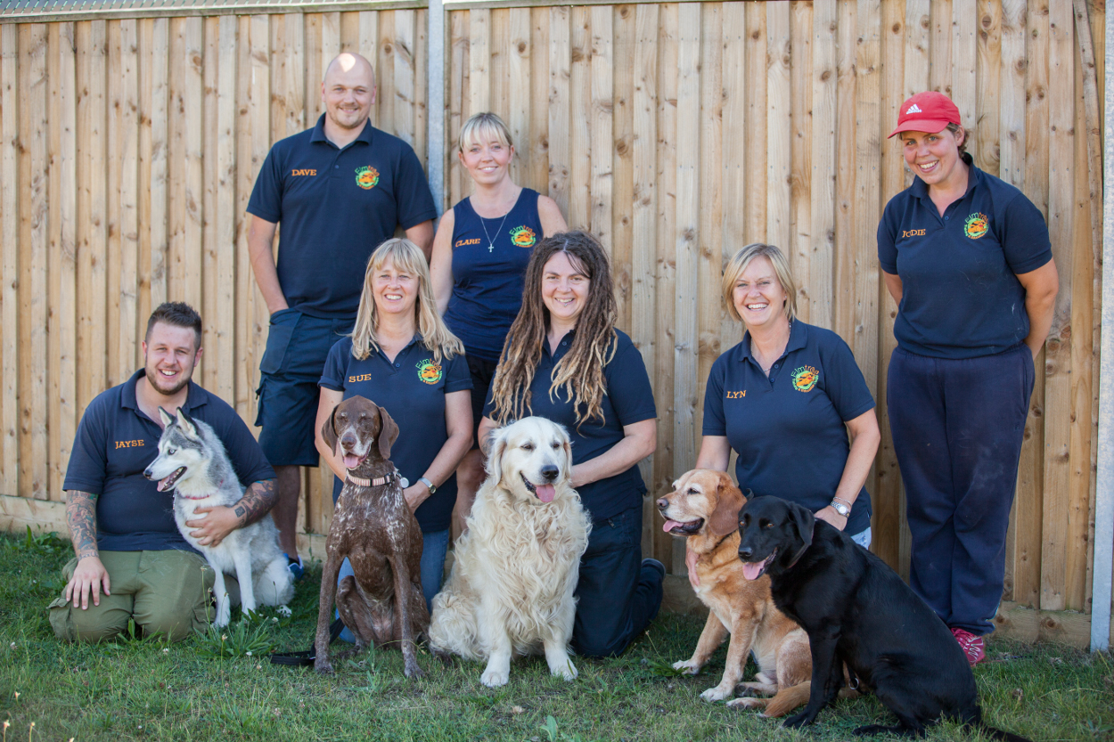 Dog training and puppy training in London